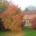 Il-Castello-in-autunno-5